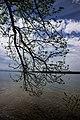 Starnberger See (107720957).jpeg