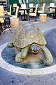 Statue of turtle in Spoleto.jpg