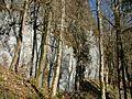 Steilwand - panoramio (2).jpg