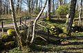 Stile in Gullmarsskogen 2.jpg