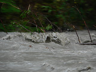Stillaguamish River 26659.JPG