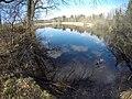 Stocksee.jpg