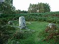 Stoke Flat stone circle - geograph.org.uk - 577265.jpg