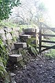 Stone stile at Goongillings - geograph.org.uk - 1132072.jpg