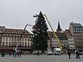 Strasbourg-Installation du sapin de Noël sur la place Kléber (1).jpg