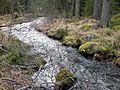 Stream Running to Paattakaisjärvi - panoramio.jpg