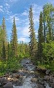Stream in Sarek National Park (DSCF2597).jpg