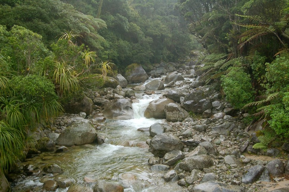 Stream on Heaphy Track