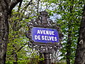 Street sign Avenue De Selves.jpg