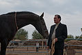 Studfarm in Turkmenistan - Flickr - Kerri-Jo (11).jpg