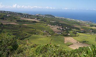Petite-Île - Image: Sugar Cane Fields Reunion Island