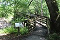 Suwannee River State Park footbridge over Lime Sink Run with sign.jpg
