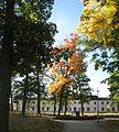 Svartsjö slott, östra fasaden, vy från parken, 2016d.jpg