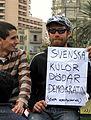 Swedish protester in Tahrir.jpg