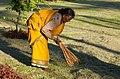 Sweeper (14353835158).jpg