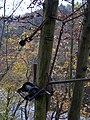 Třebenice, lanovka k chatě 0210, klika.jpg