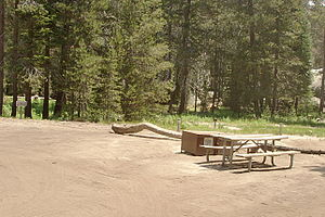 Campsite at Tamarack Flat Campground, Yosemite...