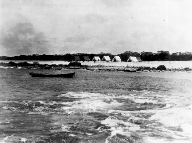 Tanager Expedition tent camp at Wake Island, 1923