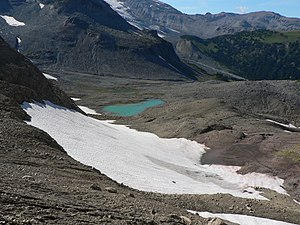 Snow field - Meltwater from snowfields fill tarns on Mount Rainier.