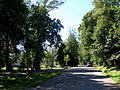 TatranskaLomnica11Slovakia11.jpg