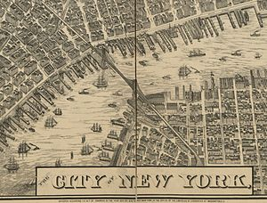 Taylor Map - City of New York.jpg