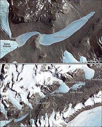 Lake Bonney (Antarctica) - Satellite Image of area