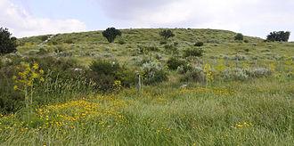Maresha - Tel Maresha