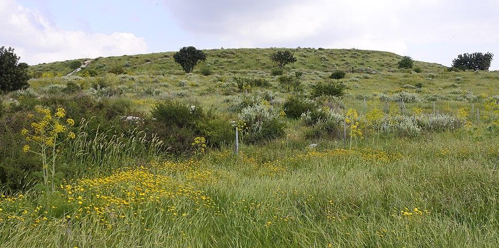 Tel Maresha 032116
