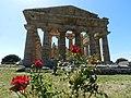 Tempio di Nettuno010.jpg