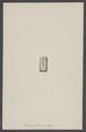 Tentaculites ornatus - - Print - Iconographia Zoologica - Special Collections University of Amsterdam - UBAINV0274 007 01 0043.tif