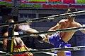 Thai boxing high kick.jpg