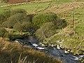 The Afon Mawddach in Cwm yr Allt-lwyd - geograph.org.uk - 1555672.jpg