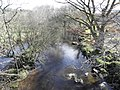 The Ballinderry river at Wellbrook Beetling Mill,Cookstown - geograph.org.uk - 1823930.jpg