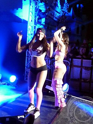 Brie Bella - After returning to WWE, the twins began dressing in different outfits, as seen here
