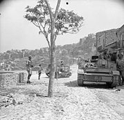The British Army in Sicily 1943 NA5387