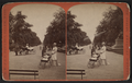 The Mall, from Robert N. Dennis collection of stereoscopic views 4.png