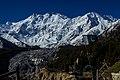 The Mighty Nanga Parbat with glacier view.jpg