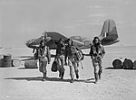 The South African Air Force during the Second World War CM2079.jpg