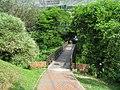 The path ahead (7856504060).jpg