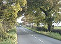 The road from Trowell to Cossall, looking south - geograph.org.uk - 616352.jpg