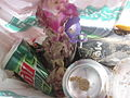 This is litter collected from the beach in Waikiki as a part of an ongoing art project.jpg