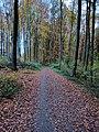Through the woods in Bochum.jpg