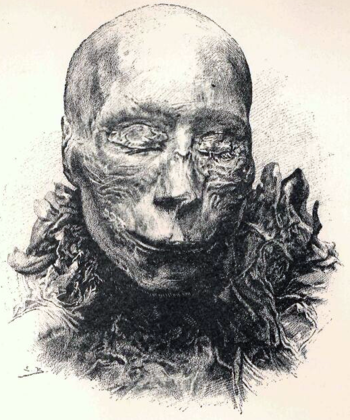 Mummified head of Thutmose II