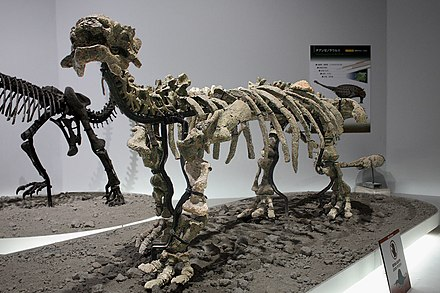 Tianzhenosaurus