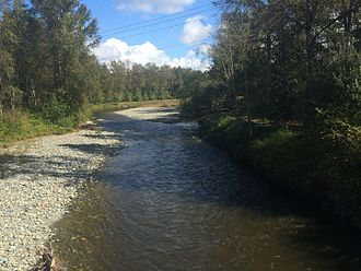 Tolt River - The Tolt River, from the trail bridge over it in Tolt MacDonald Park, in Carnation, Washington
