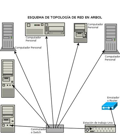 Topolog a de red wikipedia la enciclopedia libre for Red de una oficina