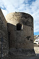 Tortosa Torre del Célio 487.jpg