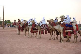 Toubou people - Toubou camel show