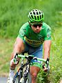 Tour de France 2016, sagan (28562877206).jpg