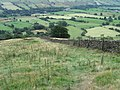 Towards Woodhouse Farm in Vale of Edale - geograph.org.uk - 1465579.jpg